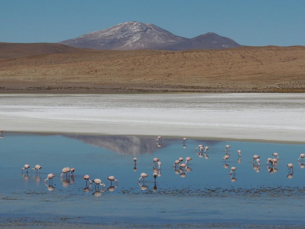 Bolivia_saltlake