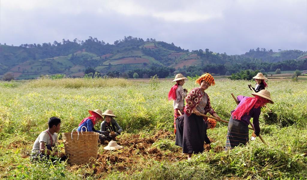 Myanmar-ervaringen-lokalebevolking
